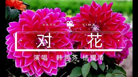 对花(韩再芬 杨耀清)