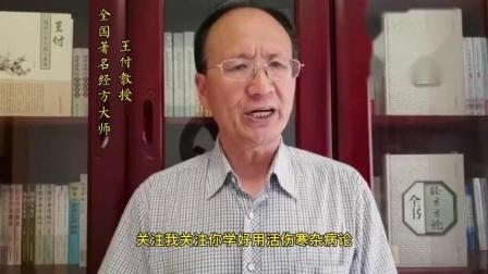 跟随全国著名经方大师王付教授学用《伤寒论》第238条