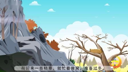 二年级上册《寒号鸟》小学语文同步精品课文动画,预习教辅视频,学习好帮手!(一堂一课APP出品)
