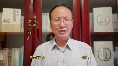 跟随全国著名经方大师王付教授学用《伤寒论》第246条