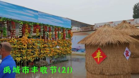 禹城市丰收节(21)