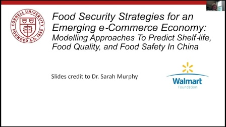 Food Security Strategies for an Emerging E-commerce Economy:
