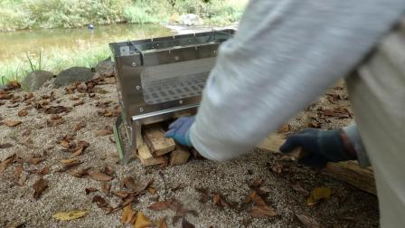 秋季 带上帐篷 在小溪边露营
