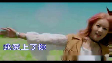 为你放弃全世界-王琪KTV歌词版