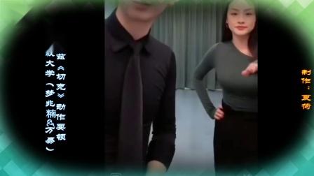 上海开放大学(梦兆䊖&万易)华尔兹《切克》动作要领以及造型动作 舞序连接+男、女各自做要领专辑教学