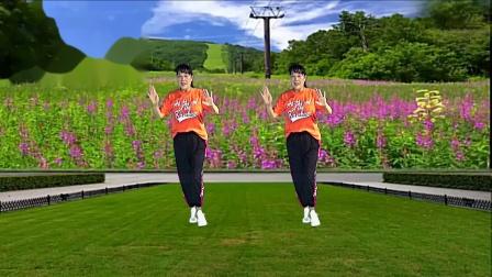 三友矿山广场舞《乘风破浪的小姐姐》32步背面演示