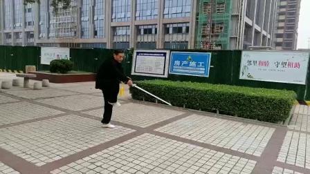 三才剑.龙形剑合练(崔扎根先生)