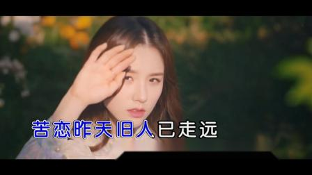李乐乐-长夜无眠 红日蓝月KTV推介