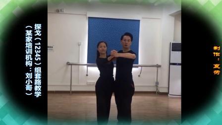 (某家培训机构:刘小哥)探戈(12345)组套路教学