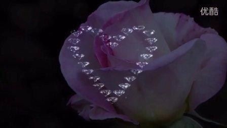 [老白] 心中的玫瑰