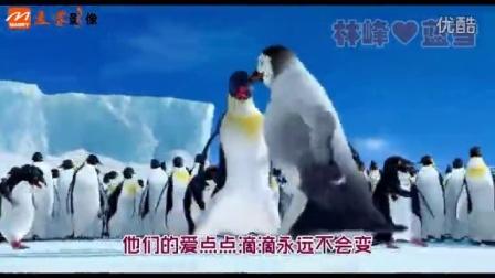 最炫小苹果婚礼搞笑开场视频,创意婚礼短片制作