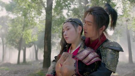 《武动乾坤·精华版》欢喜冤家日常斗嘴,张天爱获杨洋真情告白