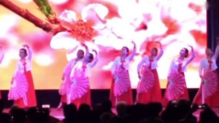 朝鲜舞《又见桃花红》快乐一族舞蹈队20181024