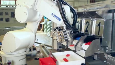 Asycube 240与Mitsubishi机器人_多种零部件同时送料