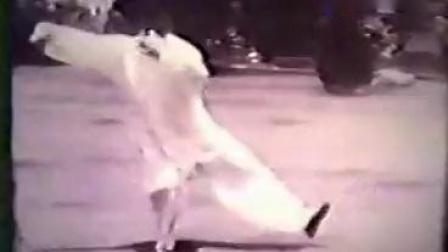 董虎岭传统杨式太极拳85式