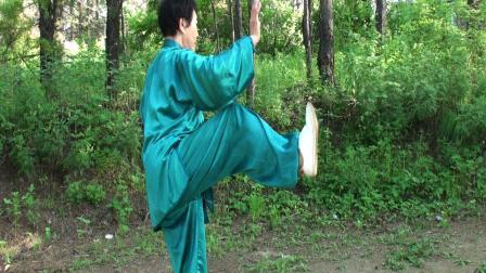 杨氏太极拳85式示范表演