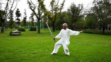 HXY习练褚传武当对剑单练(2019)