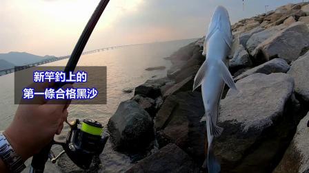 【矶钓】试新竿 Shimano Basis 1.5-530