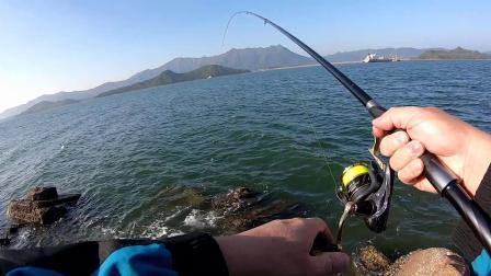 矶钓 | 2020.01.30 全游动练习@香港北水钓到第一条黑鯛