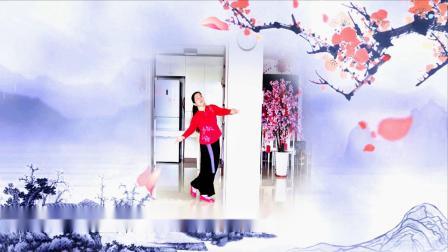 梅花泪〖背面〗古典舞 曾惠林舞蹈系列