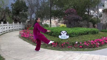 四十二式太极拳.由四川省石棉县老年大学太极拳班教师徐泽蓉展示。mp4