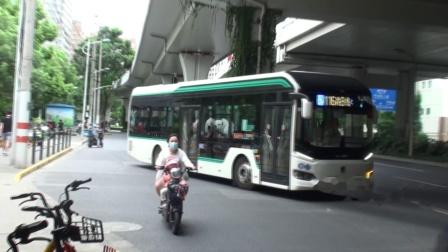上海公交 巴士五公司 116B路 S2Y-0590