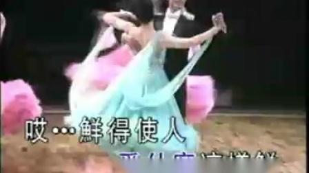 歌伴舞  中四【橄榄树 花儿为什么这样红】_标清