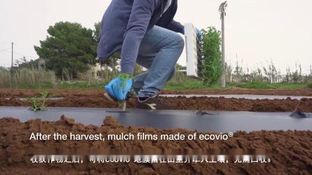 土壤可生物降解的巴斯夫ecovio®地膜