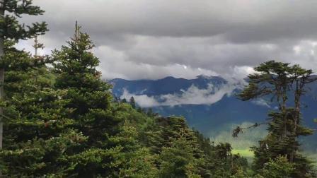西藏的天、山、水、林的美景(录像MV}