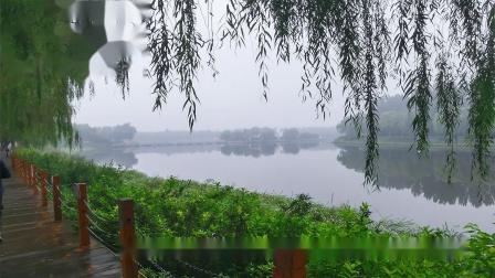 雨后的稻香湖相册