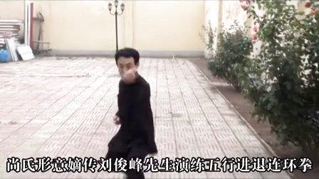 形意拳-  尚派形意拳-五行进退连环拳-刘俊峰先生