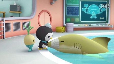 【海底小纵队】海底小纵队之柠檬鲨