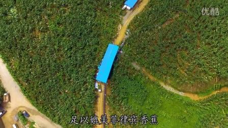 中国新农人·出彩中国蕉-常哥家的云河香蕉 《握在手中的丰收》