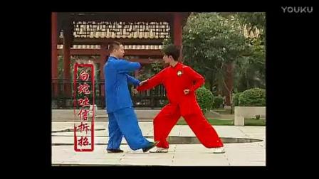 杨式太极拳 3段拆招分解