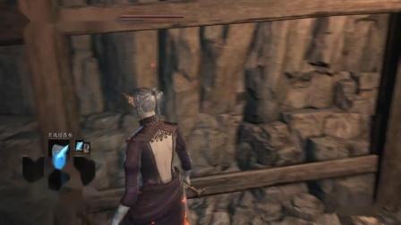 《黑暗之魂三》法师路线全剧情收集娱乐流程解说DLC2环印城P7