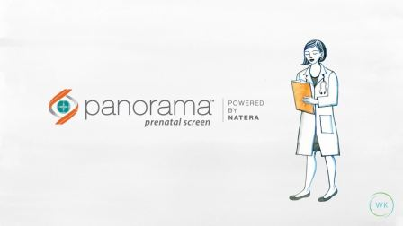 What is the Panorama Test.