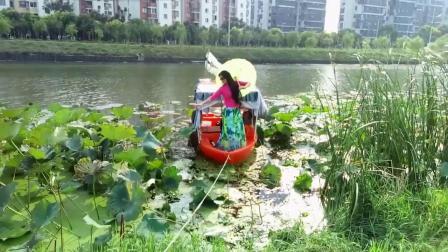 上海好风光