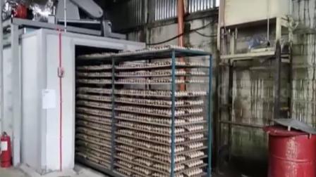 必硕科技——纸浆模塑设备制造商蛋托生产设备隧道式烘干线