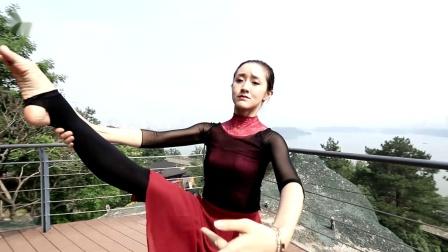 龍攀老师原创舞韵瑜伽《一生所爱》完整版