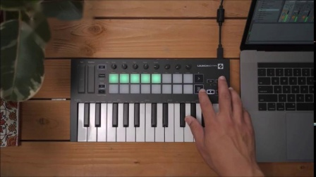 Novation // Launchkey Mini Mk3 暂停/独奏/静音