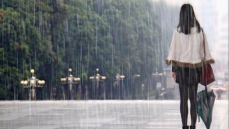 《忧伤飘满雨季》(徐金卓 埙吹奏)
