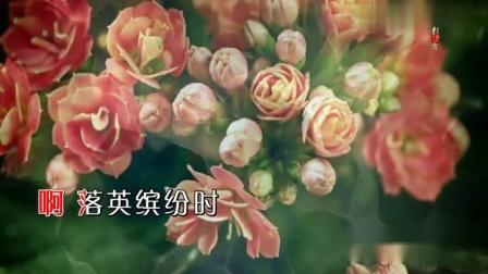 留香 ( 张也 - 双轨 )