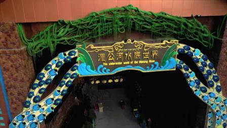 这家虚拟全景沉浸式水族馆的7D影院科技感爆棚!