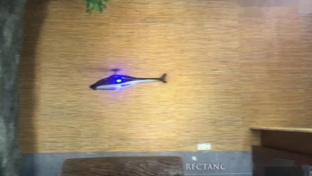 ESKY300V2概念直升机能玩出哪些花样