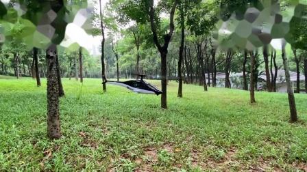 ESKY300V2-享受飞行时光(公园飞行)