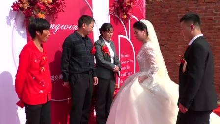 施各庄 杨文涛 邹菲 婚礼录像 高清