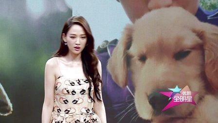陈乔恩花絮 分享片场与萌犬的爆笑故事