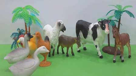 农场动物玩具,学农场动物的声音,视频为小孩儿, 教育视频, 欢迎订阅!