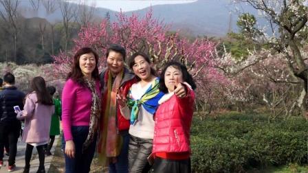 赏梅(2016南京国际梅花节)巧遇警花妇女节游园