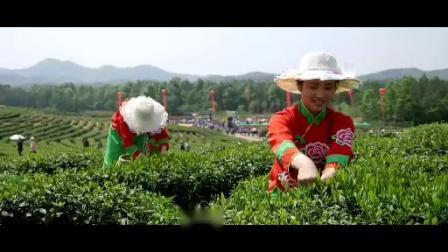 六安市裕安区茶旅项目推介片   摄制:六安市天籁影视文化中心出品